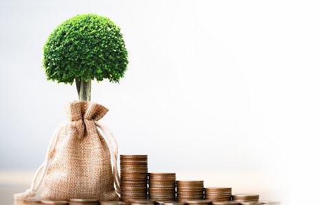 small topiary-style tree in burlap sack with stacks of coins next to it